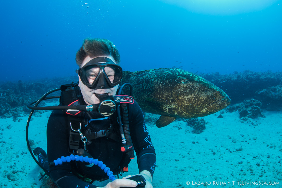 Dave Ochs and goliath grouper