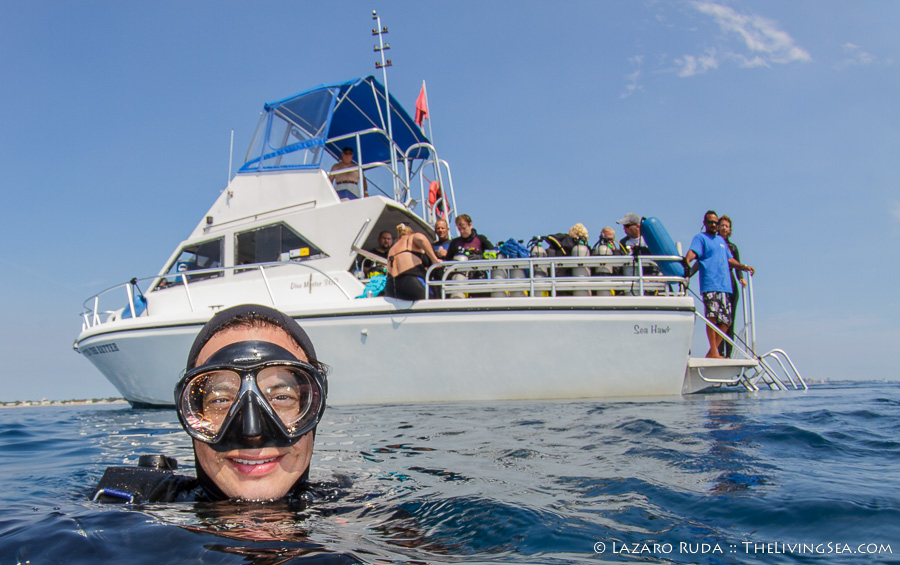 Scuba diving charter information and prices